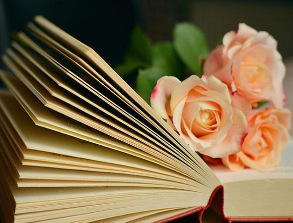 acompañamiento-literario-caterina-gravina